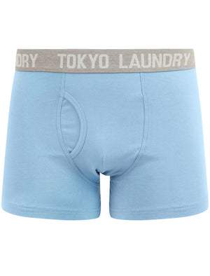 Parvin (2 Pack) Boxer Shorts Set in Allure Blue / Grape Jam – Tokyo Laundry