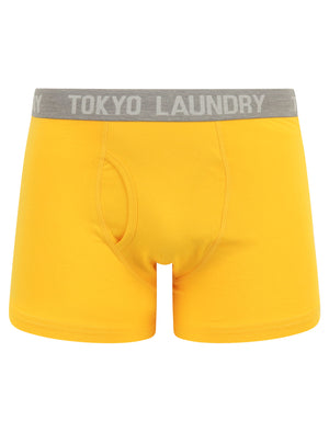 Parvin (2 Pack) Boxer Shorts Set in Solar Yellow / Hunter Green - Tokyo Laundry