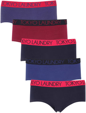 Taylor (5 Pack) Assorted Hipster Briefs In Orient Blue / Raspberry Radience / Bright Rose / Clematis Blue / Eclipse Blue – Tokyo Laundry