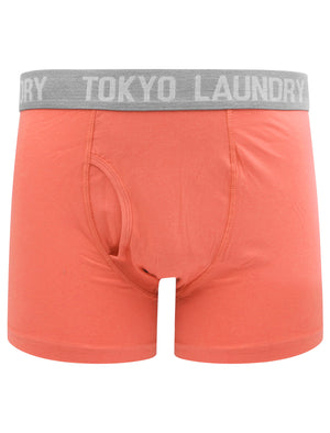 Warner 2 (2 Pack) Boxer Shorts Set In Faded Peach / Mid Grey Marl – Tokyo Laundry