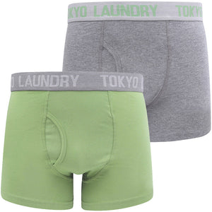Warner 2 (2 Pack) Boxer Shorts Set In Green Eyes / Mid Grey Marl – Tokyo Laundry
