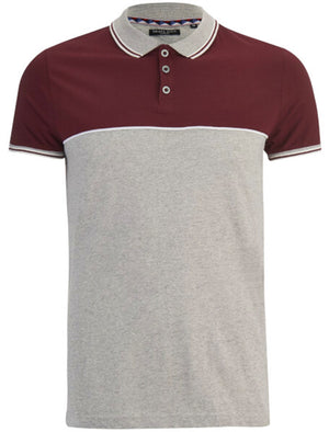Lorenzo Colour Block Cotton Polo Shirt in Oxblood