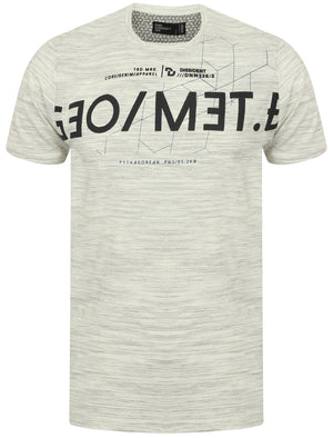 Octagon Space Dye Motif T-Shirt in Ice Grey – Dissident