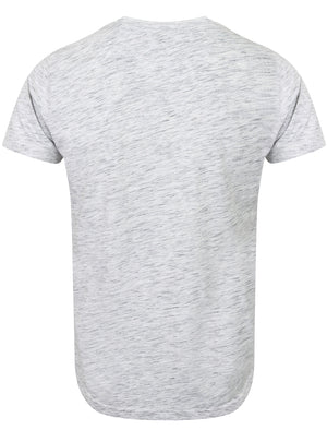 Carbon Summer Graphic T-Shirt in Ice Grey Marl – Dissident