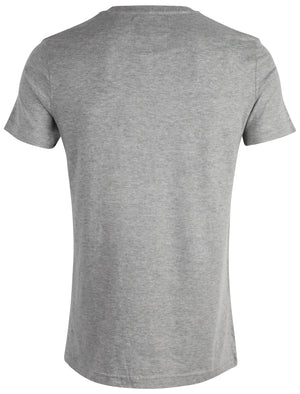 Midriff Motif Crew Neck T-Shirt in Light Grey Marl - Dissident
