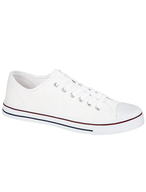 Womens Baltimore Low Top Lace Up Canvas Trainers In White