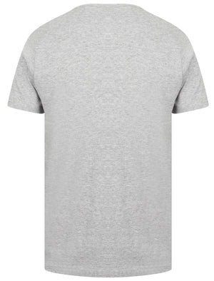 Kinsley Basic Cotton Crew Neck T-Shirt In Light Grey Marl - South Shore
