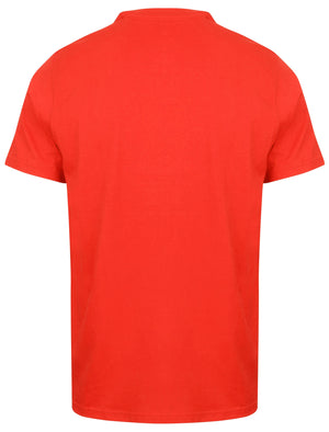 Kinsley Basic Cotton Crew Neck T-Shirt In Ribbon Red - South Shore