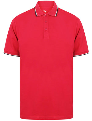 Osten Basic Cotton Pique Polo Shirt With Tipping in Cherries Jubilee – South Shore