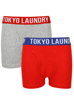 Boys Alton (2 Pack) Boxer Shorts Set In Light Grey Marl / Tokyo Red – Tokyo Laundry Kids