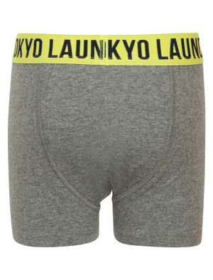 Boys Alton (2 Pack) Boxer Shorts Set In Mid Grey Marl / Blue – Tokyo Laundry Kids