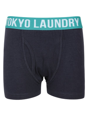 Boys Alton (2 Pack) Boxer Shorts Set In Virdian Green / Navy – Tokyo Laundry Kids