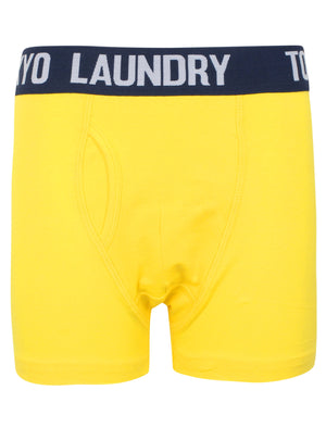 Boys Brights (2 Pack) Boxer Shorts Set In Vibrant Yellow / New Navy – Tokyo Laundry Kids