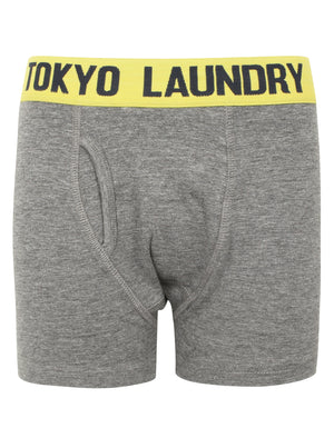 Boys Brights (2 Pack) Boxer Shorts Set In Mid Grey Marl / Virdian Green – Tokyo Laundry Kids