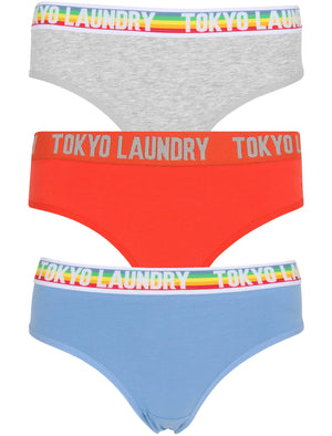 Eyelyn (3 Pack) Assorted Briefs In Silver Lake Blue / Tomato / Grey Marl – Tokyo Laundry
