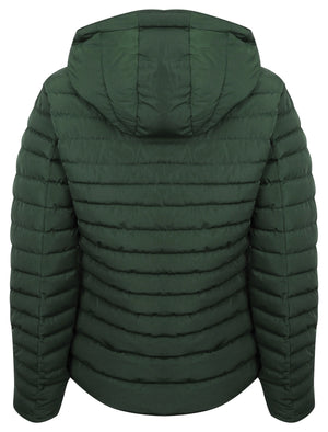 Ginger 2 Quilted Hooded Puffer Jacket in Dark Green – Tokyo Laundry