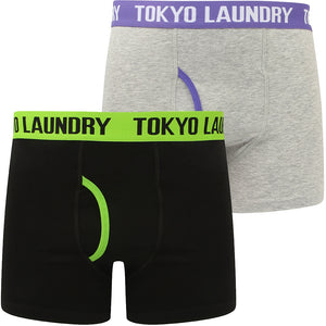 Hydes (2 Pack) Boxer Shorts Set in Laundered Green / Purple Opulence – Tokyo Laundry