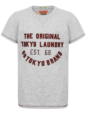 Boys K-Alabama Cove Motif T-Shirt in Light Grey Marl – Tokyo Laundry Kids