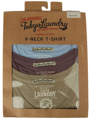 Lowe (3 Pack) V Neck Cotton T-Shirts in Angel Falls / Black Plum / Sage – Tokyo Laundry