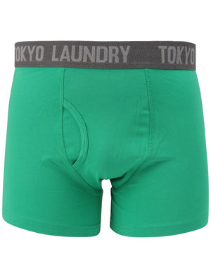 Myddleton (2 Pack) Boxer Shorts Set In Simply Green / Mid Grey Marl – Tokyo Laundry