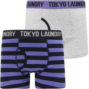 Newtown (2 Pack) Striped Boxer Shorts Set In Light Grey Marl / Purple Opulence – Tokyo Laundry