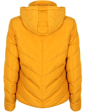 Oracle Chevron Quilted Hooded Puffer Jacket in Old Gold – Tokyo Laundry