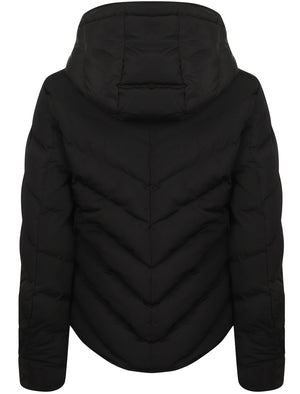 Oracle Chevron Quilted Hooded Puffer Jacket in Black – Tokyo Laundry
