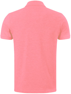 Rochester Polo Shirt in Pastel Pink - Tokyo Laundry