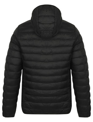 Talus Quilted Puffer Jacket with Hood in Black - Tokyo Laundry