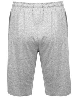 Tampere Jersey Lounge Pyjama Shorts In Light Grey Marl - Tokyo Laundry