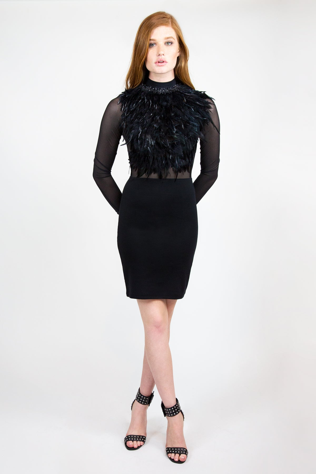 Sheer Feathered Dress