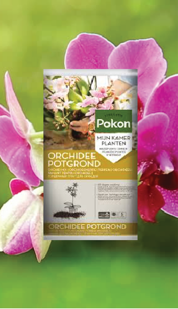 HADECO ORCHID MIX