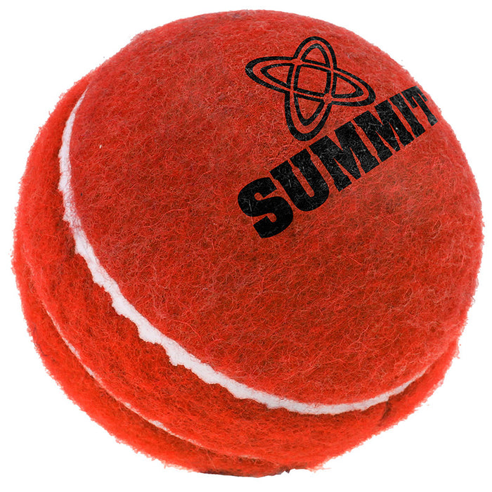 SUMMIT Bouncer Ball