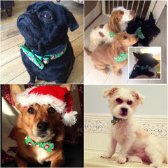 christmas dog collar | Handmade Dog Collars | Fabric Dog Collars