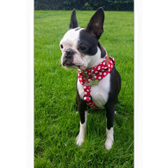 Red Polka Dog Collar | Handmade Dog Collars | Fabric Dog Collars