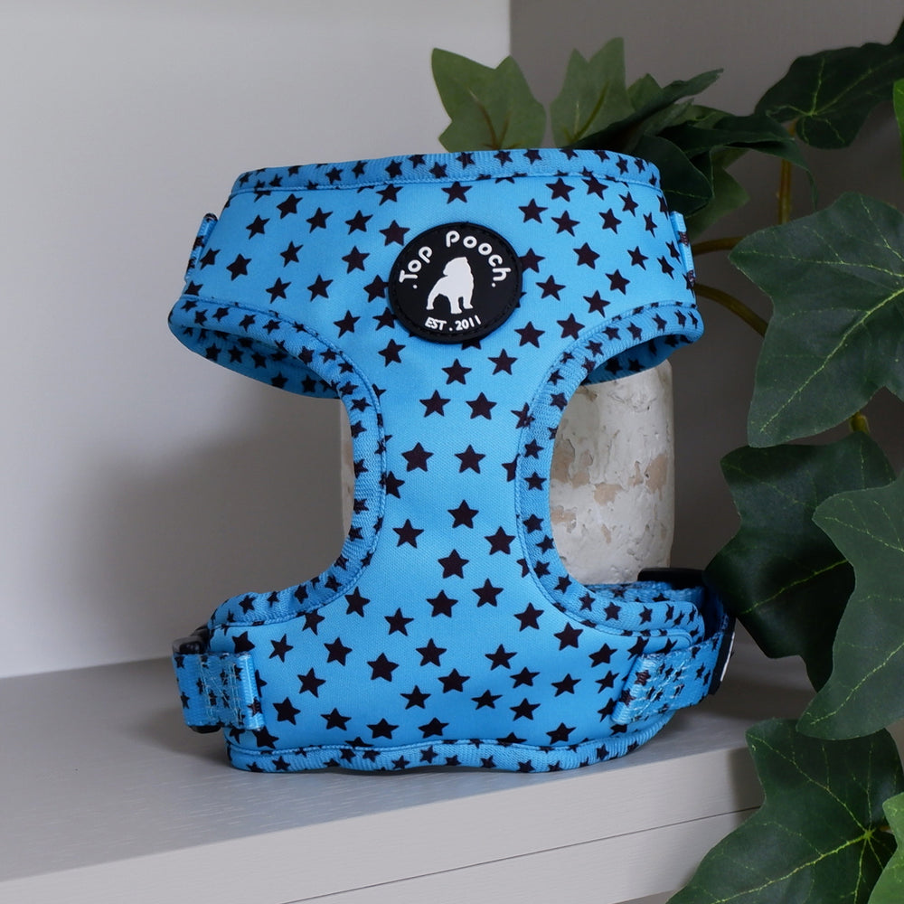 Stargazer Dog Harness