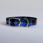 Royal Blue Tartan Buckle Dog Collar