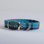 Turquoise Tartan Buckle Dog Collar