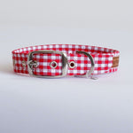 Gingham Red Buckle Dog Collar