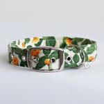 Cactus Buckle Dog Collar