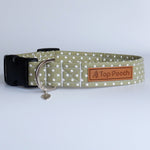 Sage Polka Dog Collar
