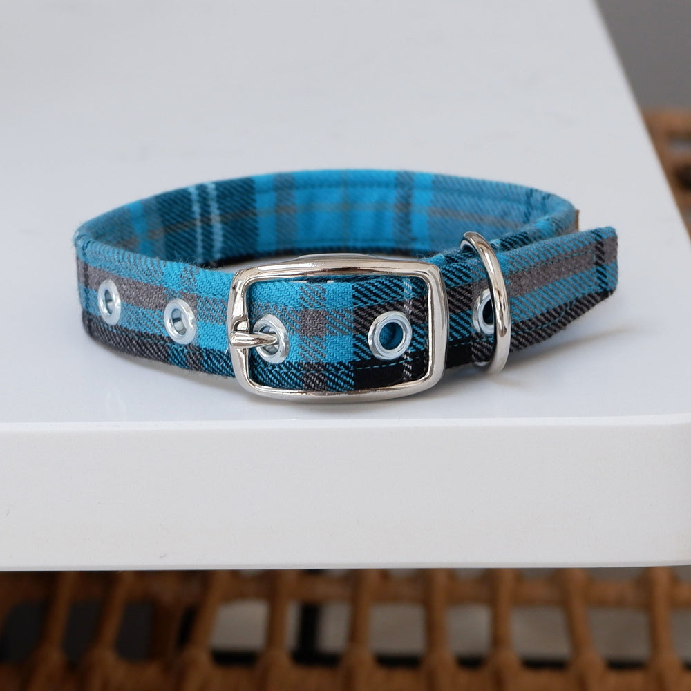 SMALL Turquoise Tartan Buckle Dog Collar