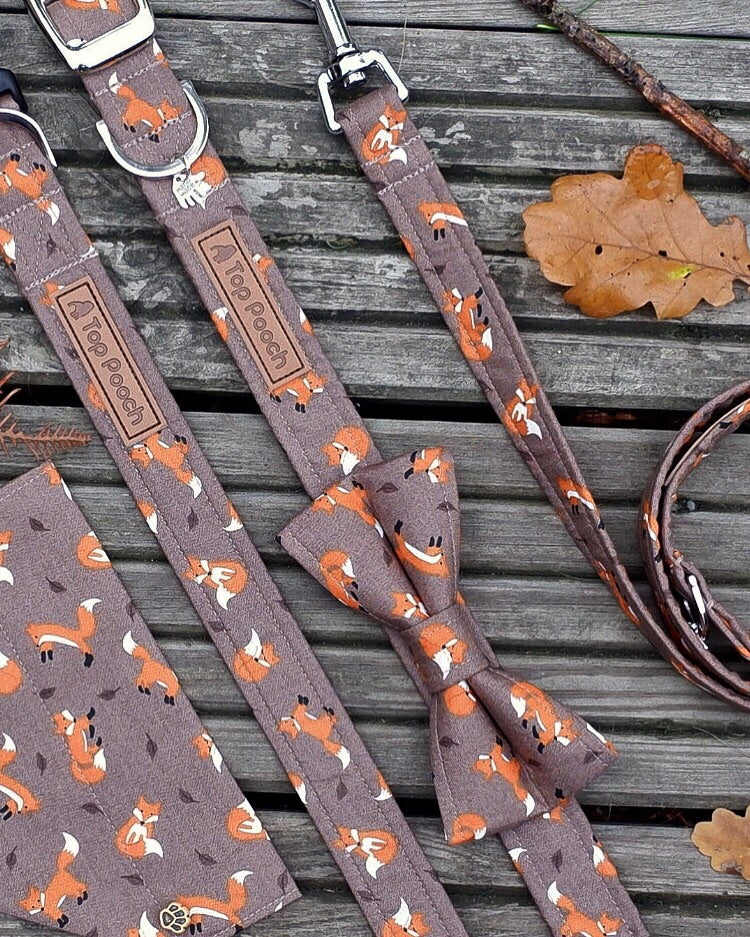 Autumn Foxes Buckle Dog Collar