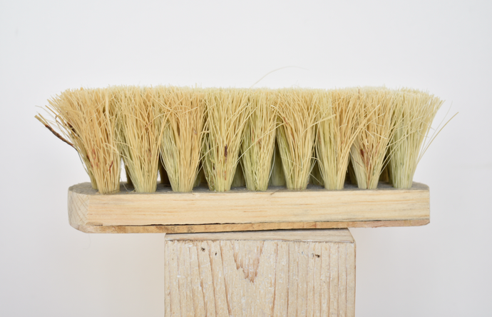 Natural shoe brush
