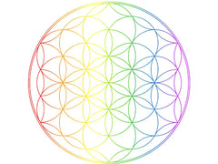 What are Chakras? The word chakra comes from Sanskrit and means wheel or circle of energy