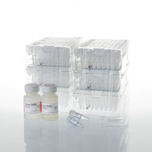 Maxwell CSC Blood DNA Kit