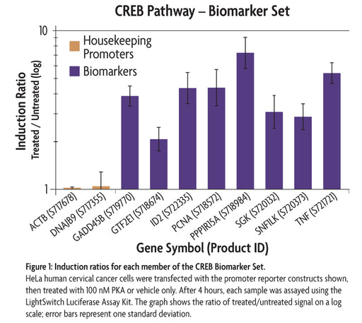 LightSwitch™ CREB Biomarker Set