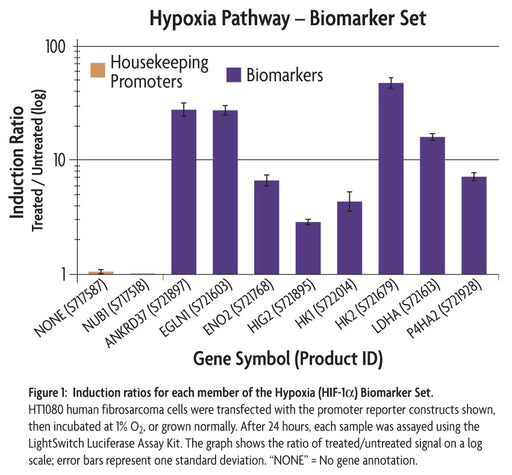 LightSwitch™ Hypoxia (HIF-1α) Biomarker Set