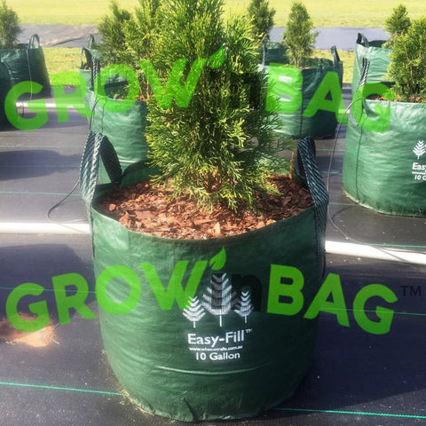 Grow Bags  10 Gallon  with 2 Handles of 10 Packs