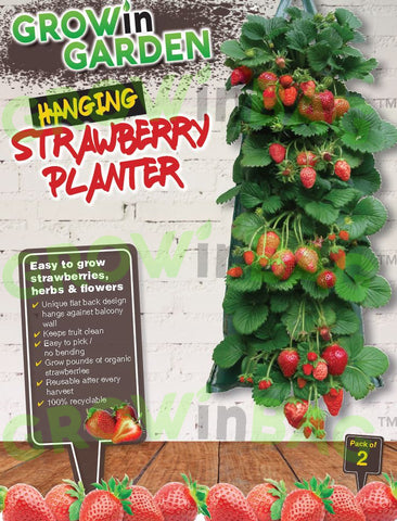 Hanging Strawberry Planter Pack of 2